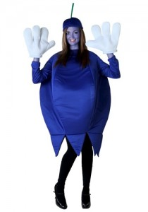 willy wonka blueberry costume