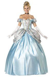 adult cinderella costume for women